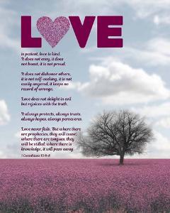 Corinthians 13:4-8 Love is Patient - Pink Field by Inspire Me