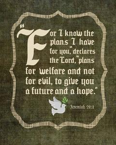 Jeremiah 29:11 For I know the Plans I have for You (White Dove) by Inspire Me