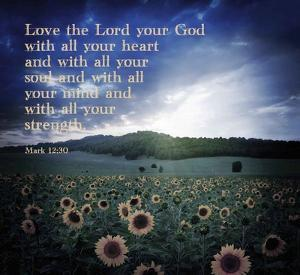 Mark 12:30 Love the Lord Your God (Sunflowers) by Inspire Me