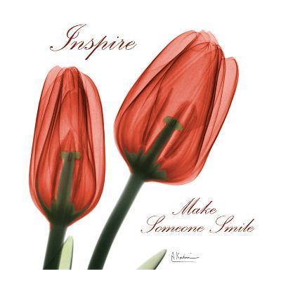 Inspire Tulips-Albert Koetsier-Art Print