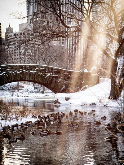 Instants of NY Series - the Gapstow Bridge of Central Park in Winter, Manhattan in New York City-Philippe Hugonnard-Photographic Print