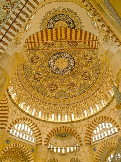 Interior of the Selimiye Mosque, Edirne, Anatolia, Turkey-Adam Woolfitt-Photographic Print