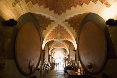 Interior of Wine Cellar (Caveau) of Chateau de Ventenac-En-Minervois, Languedoc-Roussillon, France-Nick Servian-Photographic Print