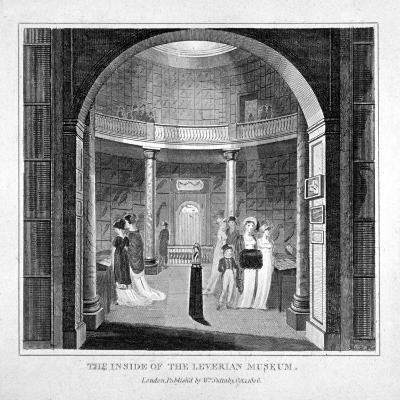 Interior View of the Leverian Museum, Albion Place, Southwark, London, 1806--Giclee Print