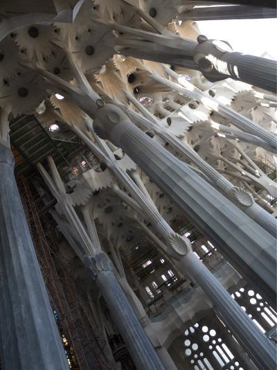 Interior with Columns and Windows, La Sagrada Familia Church, Barcelona, Catalonia, Spain, Europe-Nick Servian-Photographic Print