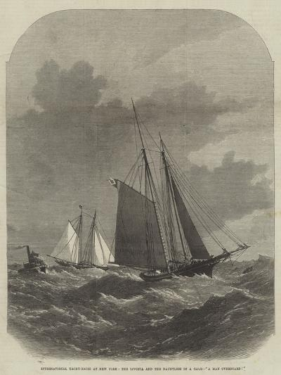 International Yacht-Races at New York, the Livonia and the Dauntless in a Gale, A Man Overboard!-Edwin Weedon-Giclee Print