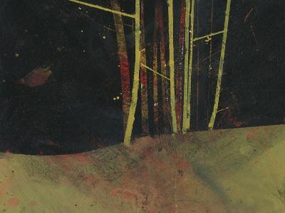 Into the Dark Wood-Paul Bailey-Premium Giclee Print