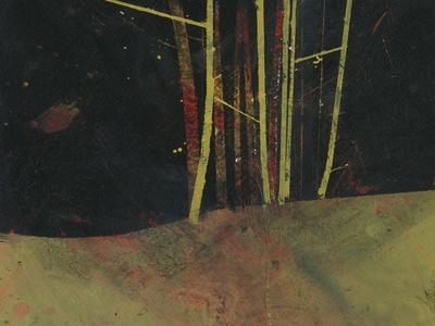 https://imgc.artprintimages.com/img/print/into-the-dark-wood_u-l-q1bhj330.jpg?p=0