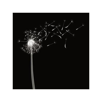 Into the Night II-Jim Wehtje-Giclee Print