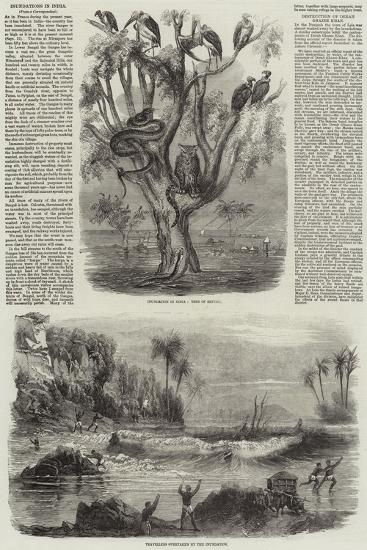 Inundation in India--Giclee Print