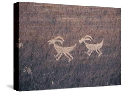 Indian Petroglyphs Depicting Bighorn Sheep