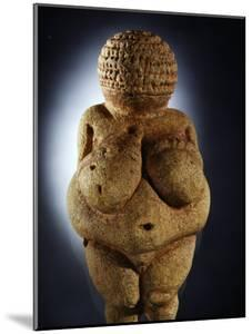 The Limestone Venus of Willendorf is Commonly Assumed to be a Fertility Symbol by Ira Block