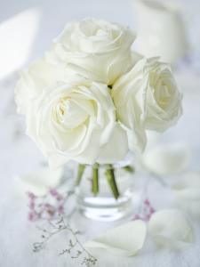 A Bunch of White Roses in a Glass Vase by Ira Leoni
