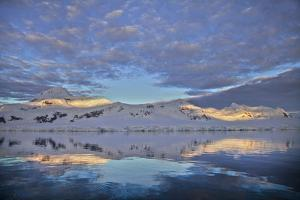 Alpenglow on Glaciated Coastal Mountains at Sunrise, Reflected in the Sea by Ira Meyer