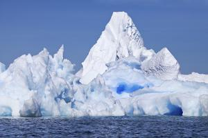 Blue Icebergs Off the Coast of the Argentine Islands by Ira Meyer
