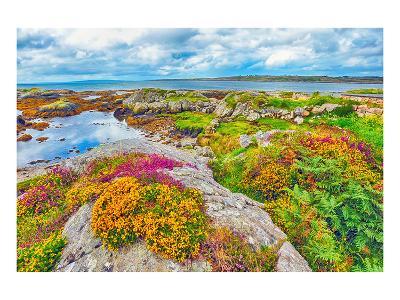 Ireland Landscape--Art Print