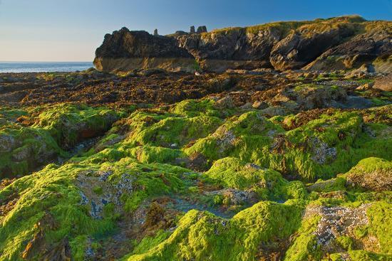 Ireland, Wicklow Coast-Thomas Ebelt-Photographic Print