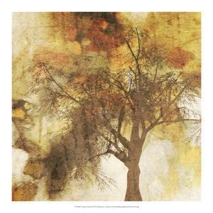 Autumn Colored II by Irena Orlov