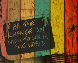 Be the Change by Irena Orlov