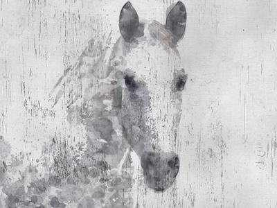 Dapple Horse I