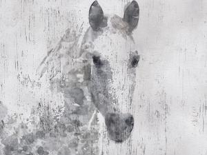 Dapple Horse I by Irena Orlov