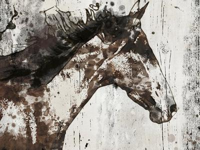 Galaxy Horse I