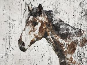 Galaxy Horse II by Irena Orlov