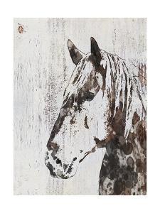 Galaxy Horse III by Irena Orlov
