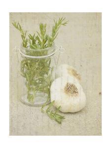 Herb Still Life II by Irena Orlov