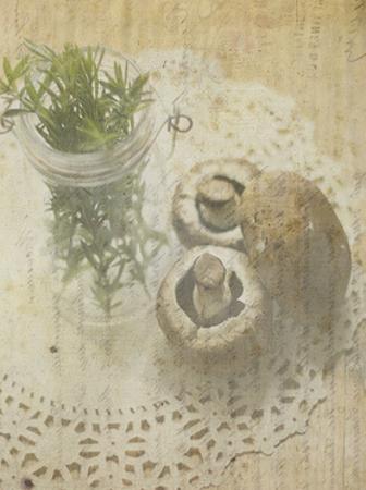 Herb Still Life IV by Irena Orlov