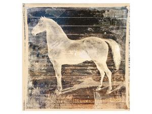 White Horse by Irena Orlov