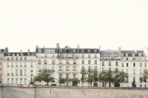 Amour de la Ville by Irene Suchocki
