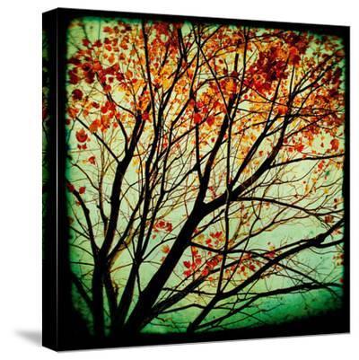 Autumn Alchemy I