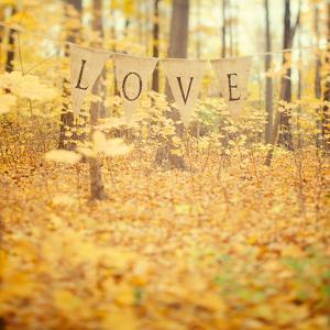 Autumn Love by Irene Suchocki