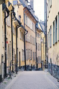 Back Streets And Alleys by Irene Suchocki