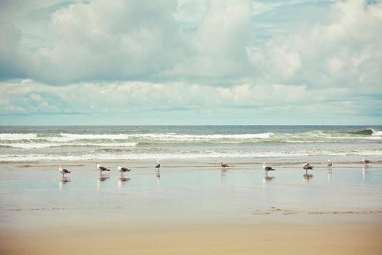 irene-suchocki-beachcombing