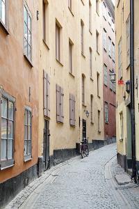 Blind Alley by Irene Suchocki