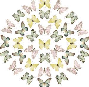 Mariposas by Irene Suchocki