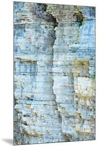 Nature's Abstract by Irene Suchocki