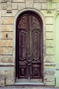 Puerta I by Irene Suchocki