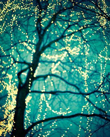 Soft Glow I by Irene Suchocki