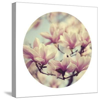 Spring Dream - Sphere