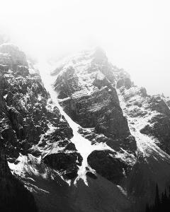 Summit - Detail by Irene Suchocki