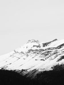 The Peak - Focus I by Irene Suchocki