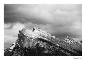 The Pinnacle by Irene Suchocki