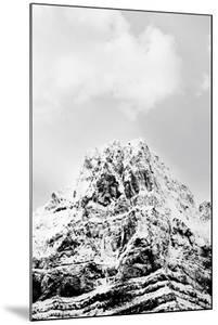 The Summit Anew by Irene Suchocki