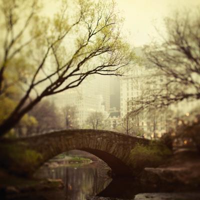 Twilight Hush by Irene Suchocki