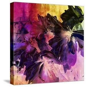 Art Floral Vintage Background with Asters by Irina QQQ