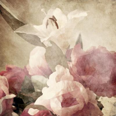 Art Floral Vintage Sepia Background with Pink Peonies and White Lily