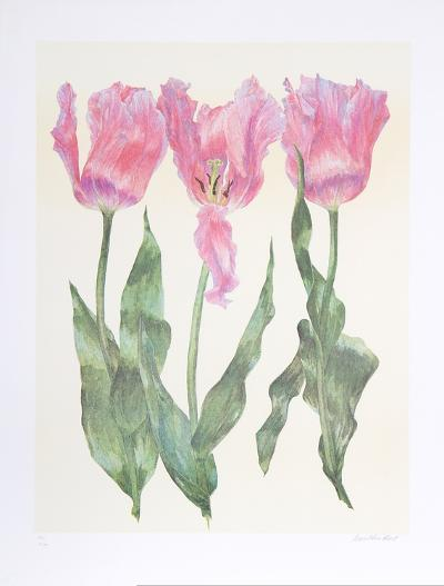 Iris Botanical-Carol Ann Bolt-Limited Edition